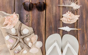 Picture sea, background, stay, star, glasses, shell, slates, anchor