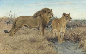 Picture 1922, German painter, Friedrich Wilhelm Kunert, German painter, Friedrich Wilhelm Kuhnert, Lions on the African ...