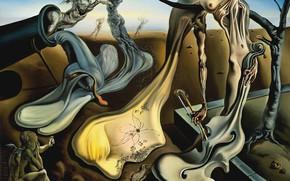Wallpaper surrealism, picture, Salvador Dali, Salvador Dali, Evening Spider Promises
