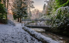 Wallpaper trees, bridge, snow, winter