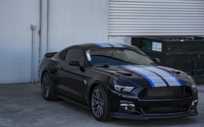 Picture mustang, ford, black