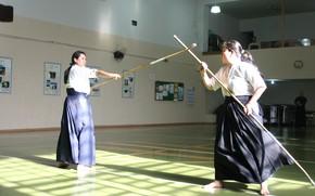 Picture weapon, samurai, asian, martial artist, dojo, Naginata, japonese