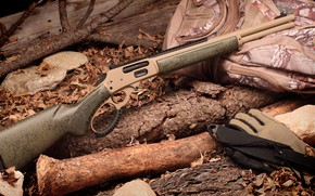 Picture weapons, tuning, Winchester, rifle, weapon, custom, custom, carabiner, winchester, rifle, carabine