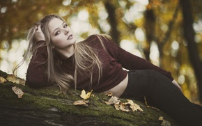 Picture autumn, look, leaves, pose, log