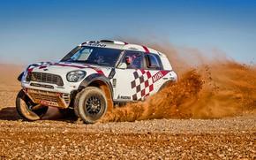 Picture Sand, Mini, Dust, White, Sport, Speed, Stones, Race, Day, Rally, Rally, Raid, MINI Cooper, X-Raid