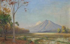 Picture oil, mountain, picture, canvas, Hal Wichers, Indian Landscape