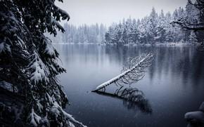 Wallpaper Jura, lake, snow, Switzerland, Soul of Gruère, autumn