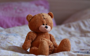 Picture toy, bed, bear