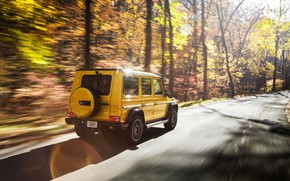 Wallpaper autumn, Mercedes-Benz, speed, rear view, AMG, G-Class, Gelandewagen, G 63, G-wagen, Colour Edition