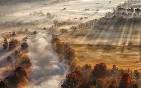 Wallpaper autumn, river, fog, light, couples, rays