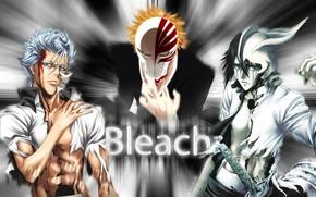Picture collage, art, guys, Bleach, Bleach