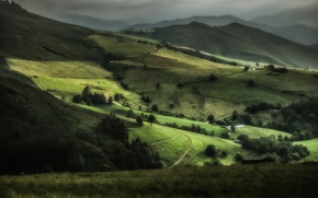 Picture trees, hills, field, space