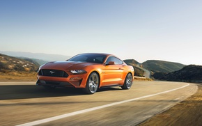 Picture Car, Ford Mustang GT