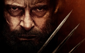 Picture Wolverine, Hugh Jackman, Logan, Marvel Comics, Movie