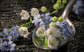 Picture flowers, spoon, blue and white