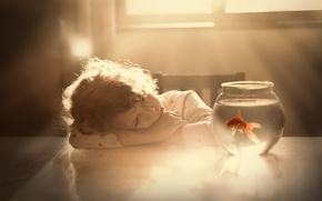 Picture aquarium, goldfish, child
