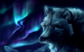 Wallpaper mountains, wolf, by SnoSwirl, Northern lights