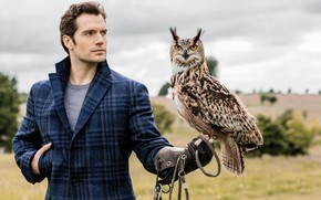 Wallpaper owl, Henry Cavill, Henry Cavill, English actor, owl