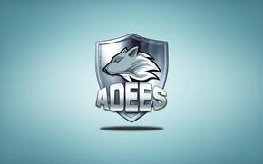 Picture team, team, csgo, eSports, csgo, adees, Edis