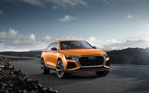 Picture Concept, Audi, Audi, the concept, crossover
