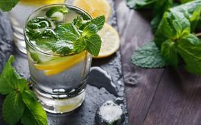 Picture lemon, lemonade, ice, mint