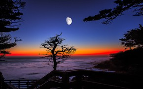 Picture The moon, CA, glow, USA, Monterey
