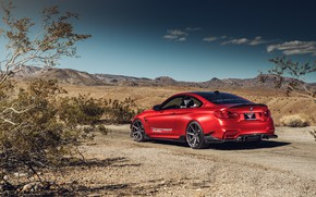 Picture auto, red, nature, design, rear view, BMW M4