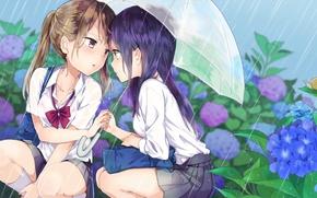Picture flowers, umbrella, girls, rain, glasses, blush, anime, art