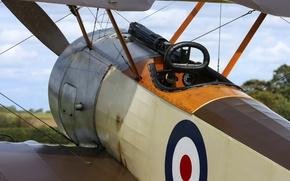 Picture cabin, machine gun, biplane