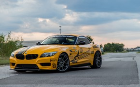 Picture BMW, Yellow, E89