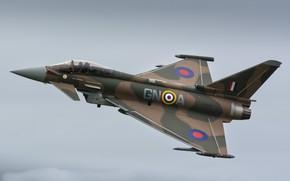 Wallpaper flight, the plane, brown, Eurofighter Typhoon