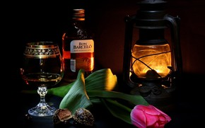 Wallpaper light, glass, romance, wine, lamp, flower, lamp, candy, the evening, mood, rum