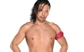 Picture look, pose, wrestler, WWE, SmackDown, Shinsuke Nakamura, Shinske Nakamura