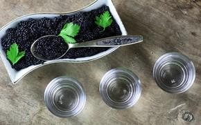 Picture spoon, vodka, caviar, seafood, seafood, caviar
