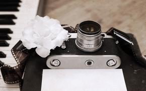 Picture retro, the camera, book, piano, style, retro, camera, old, plan, the subject, film, Artwork, film