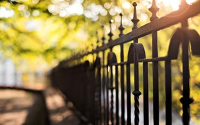 Picture summer, trees, the city, the fence, blur, macro, fence, blur, bokeh, fencing, cov in a