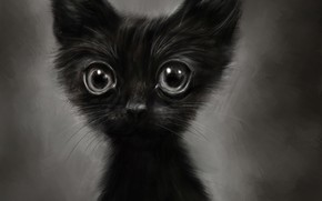 Wallpaper funny, figure, kitty, by Lusidus