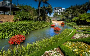 Picture flowers, lake, Park, channel