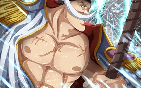 Picture One Piece, anime, asian, manga, oriental, asiatic, japonese
