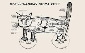 Wallpaper Kote, cat, mood, scheme, humor