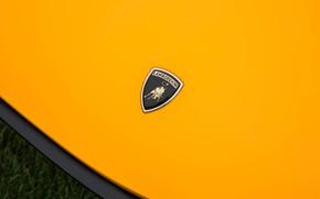 Picture Auto, Lamborghini, Machine, Classic, Logo, Orange, Logo, Car, Supercar, Lamborghini Miura, P400, Lamborghini Miura P400, …
