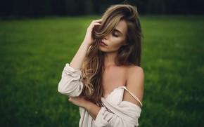 Picture sponge, the beauty, curls, Paulina