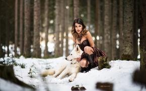 Wallpaper dress, wolf, winter, forest, snow, girl, dog