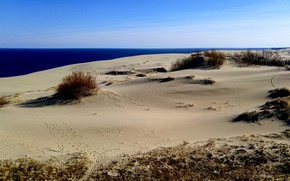 Picture sand, sea, Kaliningrad, the Curonian spit