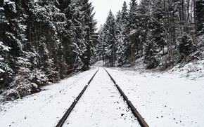 Picture winter, forest, snow, railroad