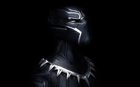 Picture mask, armor, Black Panther