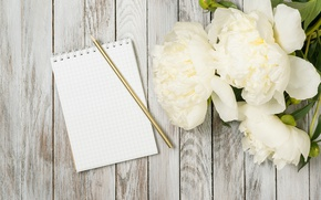 Picture white, wood, flowers, romantic, peonies, peonies, valentine`s day
