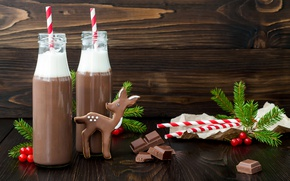 Picture holiday, new year, chocolate, Christmas, deer, cookies, cream, bottle, drink, tube, cocoa, tree branches