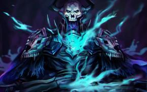 Picture skull, assassin, Fate/Grand Campaign, Fate / Grand Order