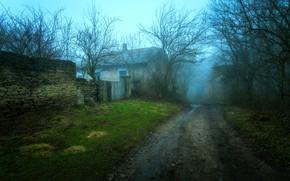 Picture House, wall, grass, trees, landscape, nature, stones, mist, dirt road